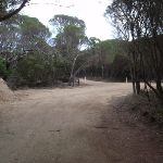 Service trail to Bournda Lagoon car park (102005)