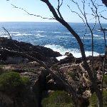 White Horse Bay (102472)