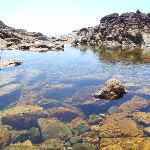 Rock pool at rocky beach (103066)