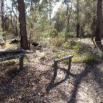 Signposts at Bournda Trig and Field Study Huts intersection (103420)
