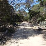 Track into Bournda Lagoon car park (103825)