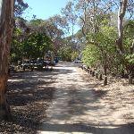 Bournda Lagoon car park (103831)