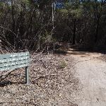 Signpost to Bondi Lake (105181)