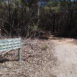 Signpost to Bondi Lake (105181)
