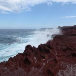 Waves crashing onto red cliffs (105400)