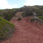 Stairs onto red cliffs (105484)