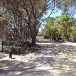 Track into Bournda Lagoon car park (105553)