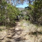 Track down to Bournda Lagoon (105583)