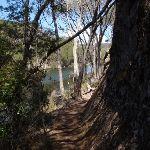 Track above Sandy Beach Creek (105841)