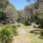 Sandy Beach Creek (105988)