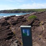 Arrow marker north of Hegarty Bay (106378)
