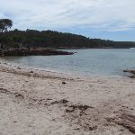 Bittangabee Beach (106570)