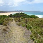 Track down to Bournda Beach (106573)