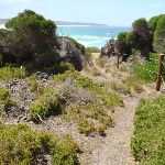 Track south of Bournda Beach (106585)