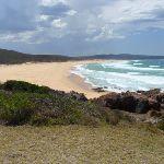 Bournda Beach (106597)