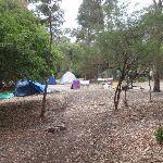 Bittangabee camping area (106657)