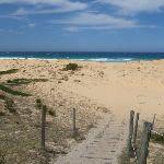 Track onto Bournda Beach (106678)