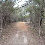 Track to Bournda Lagoon (106822)