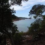 View through the bush to the northern Bittangabee Point (108103)