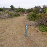 Arrow marker along the grassed headland (108295)
