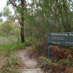 Following the Bullawarring Track (115744)