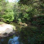 Gibbergong water hole (117424)