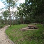 Apple Tree Flat picnic area (117952)