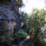 Rock wall on Warrimoo Track (118243)