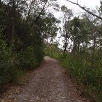 Heading down a long hill (121954)