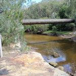 Middle Harbour Creek and the pipe bridge (126373)