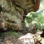 Cave on Governor Phillip track (126565)