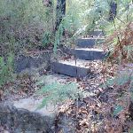 Natural Bridge Track steps (127309)
