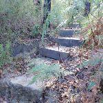 Natural Bridge Track steps (127309)