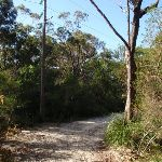 Currie Rd Service trail (127456)