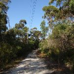 Following the powerlines through the bush (127468)