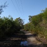 Currie Rd service trail (127492)
