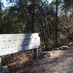 Gordon Creek service trail and track crossing (130120)