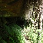 Passing under a rock overhang on Casuarina track (131560)