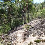 Rocky outcrop on Casuarina track (131920)
