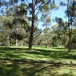 Davidson Park (132205)