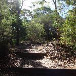 Flat Rock Beach track (132664)