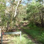 Bates Creek Track (133648)