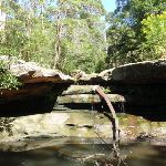 Little Digger falls pool (136156)