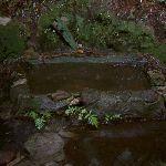 Basin on Walls Ledge Track (13792)