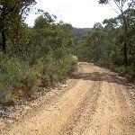 Service trail McNicol St (14227)
