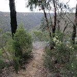 Glimpse of Pisgah Rock (143688)