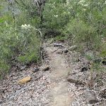 Track to Attic Cave (143736)