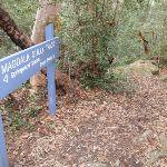 Magdala Gully sign (146499)