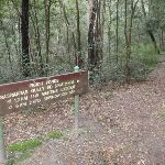 Sign in Perch Ponds camping area (147426)