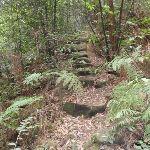 Rock steps (147441)
